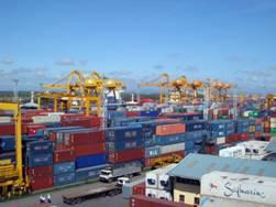 """Bùng nổ """"thương mại xám"""" thúc đẩy nhập khẩu thủy sản của Việt Nam từ 25 triệu USD vượt trên 5 tỉ USD"""